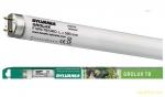 OSRAM | G13  L30W/T8/GROLUX для растений и аквариумов лампа 895mm SYLVAN 0002225