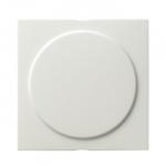 GIRA | 026840 Заглушка с опорной пластиной глянц. бел  Gira